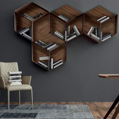 Pangea Shelf, Tonin Casa